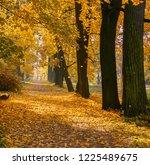 scenic scene in the autumn park....   Shutterstock . vector #1225489675