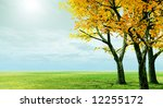 autumn trees | Shutterstock . vector #12255172