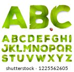 vector alphabet letters made... | Shutterstock .eps vector #1225562605