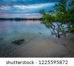 Tropical scene on Lake Norman, Cornelius, NC