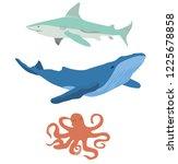 vector illustration of sea... | Shutterstock .eps vector #1225678858