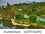 river in the park with palms ... | Shutterstock . vector #1225716292
