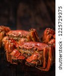 there are several hairy crabs... | Shutterstock . vector #1225729375