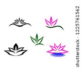 lotus flowers vector | Shutterstock .eps vector #1225761562
