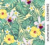 seamless hand drawn tropical...   Shutterstock .eps vector #1225848982