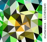 abstract background multicolor... | Shutterstock . vector #1225852645