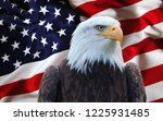 The American Flag With Eagle