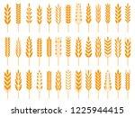 wheat grain icons. wheats bread ... | Shutterstock .eps vector #1225944415