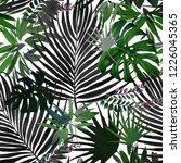tropical pattern. jungle plant... | Shutterstock . vector #1226045365