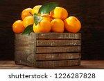 fresh mandarin oranges fruit or ... | Shutterstock . vector #1226287828