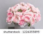 ranunculus asiaticus or persian ...   Shutterstock . vector #1226355895