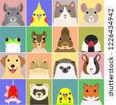 set of various pet animals face | Shutterstock .eps vector #1226434942