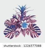 tropical plant. watercolor... | Shutterstock . vector #1226577088