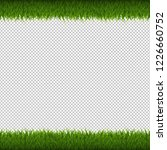 green grass border isolated... | Shutterstock . vector #1226660752