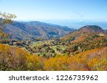view of the autumn leaves of...   Shutterstock . vector #1226735962
