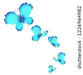 beautiful butterflies  blue... | Shutterstock . vector #1226964982