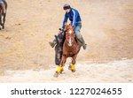 shymkent  kazakhstan  november... | Shutterstock . vector #1227024655