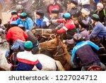 shymkent  kazakhstan  november... | Shutterstock . vector #1227024712
