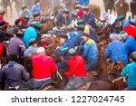 shymkent  kazakhstan  november... | Shutterstock . vector #1227024745