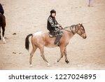 shymkent  kazakhstan  november... | Shutterstock . vector #1227024895