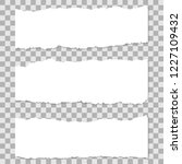 long horizontal torn off pieces ... | Shutterstock .eps vector #1227109432