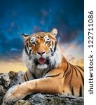 tiger on the sky background | Shutterstock . vector #122711086