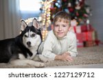 boy with dog waiting for... | Shutterstock . vector #1227129712