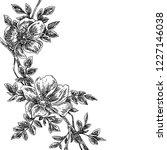 branch of wild rose. sketch.... | Shutterstock .eps vector #1227146038