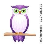 Cute Purple Owl Sitting On...