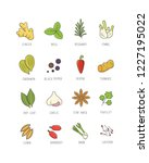 culinary spices and herb for...   Shutterstock .eps vector #1227195022