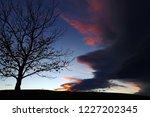 at sunset an uncanny storm...   Shutterstock . vector #1227202345