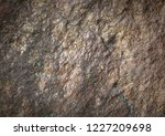 gray and brown textured stone... | Shutterstock . vector #1227209698