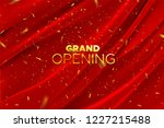 grand opening. business startup ... | Shutterstock .eps vector #1227215488