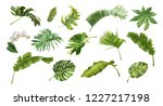vector realistic illustration... | Shutterstock .eps vector #1227217198