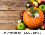 rustic fall greeting card... | Shutterstock . vector #1227218488