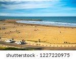 mar del plata  argentina   26... | Shutterstock . vector #1227220975