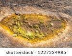 unusual background of stones ... | Shutterstock . vector #1227234985