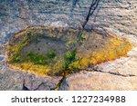 unusual background of stones ... | Shutterstock . vector #1227234988