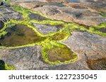 unusual background of stones ... | Shutterstock . vector #1227235045