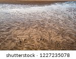 sandy shore. extraordinary... | Shutterstock . vector #1227235078