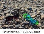 on the seashore   glasses for... | Shutterstock . vector #1227235885