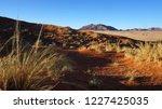 elim dunes in namib naukluft... | Shutterstock . vector #1227425035