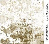 grunge urban vector texture... | Shutterstock .eps vector #1227572602