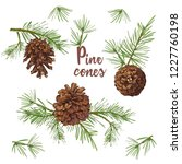 realistic botanical ink sketch... | Shutterstock .eps vector #1227760198