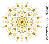 circle line geometric ornament...   Shutterstock .eps vector #1227829048