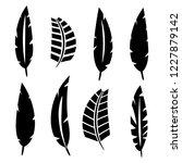 set of various bird feathers.... | Shutterstock .eps vector #1227879142