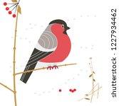 cute red bullfinch bird sitting ... | Shutterstock .eps vector #1227934462