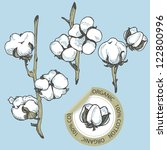 cotton set with sticker in... | Shutterstock .eps vector #122800996