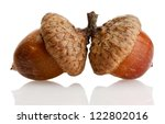Brown Acorns  Isolated On White