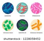 set of various symbiotic human...   Shutterstock .eps vector #1228058452